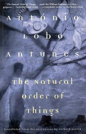The Natural Order of Things av Antonio Lobo Antunes (Heftet)