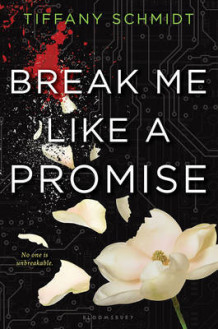 Break Me Like a Promise av Tiffany Schmidt (Innbundet)