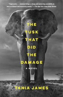 The Tusk That Did the Damage av Tania James (Heftet)