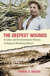 The Deepest Wounds av Thomas D. Rogers (Heftet)