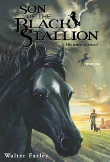 Son of the Black Stallion av Walter Farley (Innbundet)