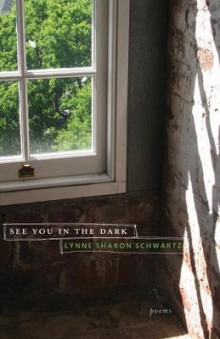 See You in the Dark av Lynne Sharon Schwartz (Heftet)