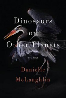 Dinosaurs on Other Planets av Danielle McLaughlin (Innbundet)
