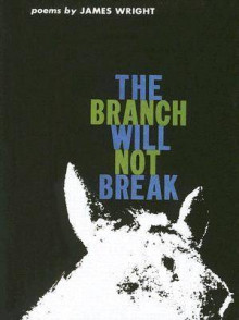 The Branch Will Not Break av James Arlington Wright (Innbundet)