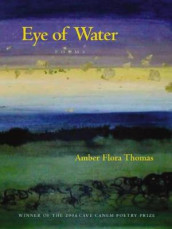 Eye of Water av Amber Flora Thomas (Heftet)