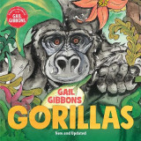 Omslag - Gorillas (New & Updated Edition)