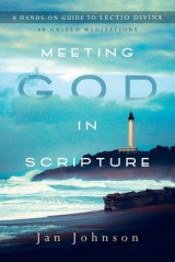 Omslag - Meeting God in Scripture