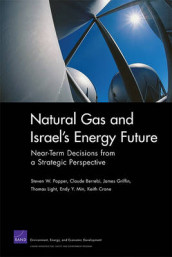 Natural Gas and Israel's Energy Future av Claude Berrebi, James Griffin, Thomas Light, Endy Y. Min og Steven W. Popper (Heftet)