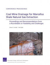 Coal Mine Drainage for Marcellus Shale Natural Gas Extraction av Aimee E. Curtright og Kate Giglio (Heftet)