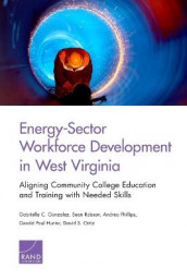 Energy-Sector Workforce Development in West Virginia av Gabriella C. Gonzalez, Gerald Paul Hunter, David S. Ortiz, Andrea Phillips og Sean Robson (Heftet)