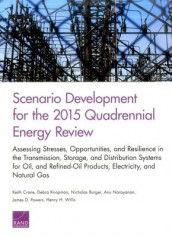 Scenario Development for the 2015 Quadrennial Energy Review av Nicholas Burger, Keith Crane, Debra Knopman, Anu Narayanan, James D. Powers og Henry H. Willis (Heftet)
