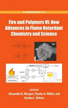 Fire and Polymers VI: New Advances in Flame Retardant Chemistry and Science (Innbundet)