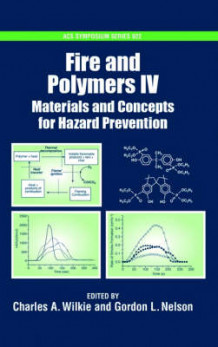 Fire and Polymers (Innbundet)