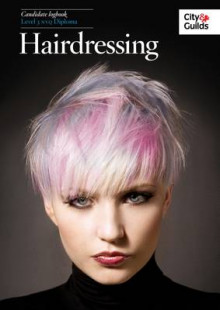 NVQ in Hairdressing Candidate Logbook: NVQ Hairdressing Logbook Level 3 av Melanie Mitchell (Heftet)
