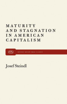 Maturity and Stagnation in American Capitalism av Josef Steindl (Heftet)