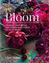 In Bloom av Clare Nolan (Innbundet)