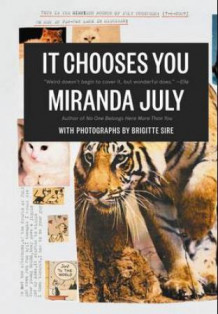 It chooses you av Miranda July (Innbundet)