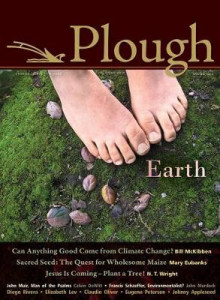 Plough Quarterly No. 4 av Bill McKibben, Eugene H Peterson, Fellow and Chaplain N T Wright, Elizabeth Lev, Calvin DeWitt, Jane Tyson Clement, Wendell Berry, Barbara Kingsolver, John Muir og Flannery O Connor (Heftet)