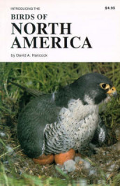 Birds of North America av David A. Hancock (Heftet)
