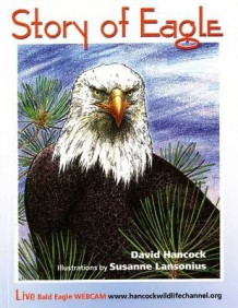 Story of Eagle Activity & Coloring Book av David Hancock (Heftet)