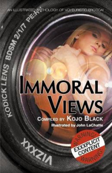 Immoral Views av Kay Jaybee, Lexie Bay og K. D. Grace (Heftet)