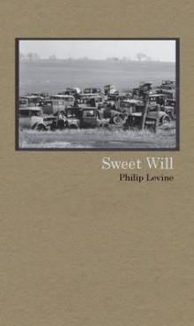 Sweet Will av Judge Philip Levine (Heftet)