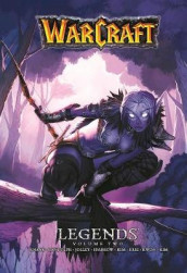 Warcraft Legends Vol. 2 av Dan Jolley, Richard A. Knaak og Aaron Sparrow (Heftet)