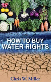 How to Buy Water Rights av Chris W Miller (Heftet)