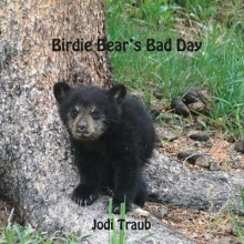 Birdie Bear's Bad Day av Jodi Traub (Heftet)
