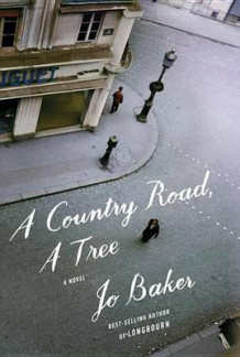 A Country Road, a Tree av Jo Baker (Innbundet)