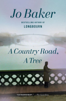 A country road, a tree av Jo Baker (Heftet)