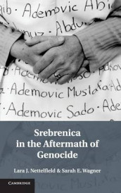Srebrenica in the Aftermath of Genocide av Lara J. Nettelfield og Sarah E. Wagner (Innbundet)