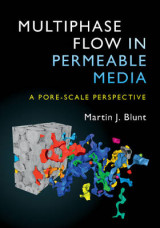 Omslag - Multiphase Flow in Permeable Media