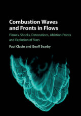 Omslag - Combustion Waves and Fronts in Flows