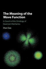 Omslag - The Meaning of the Wave Function