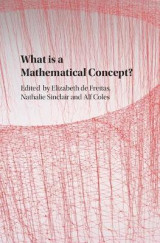 Omslag - What is a Mathematical Concept?