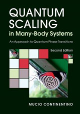 Omslag - Quantum Scaling in Many-Body Systems