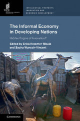 Omslag - The Informal Economy in Developing Nations