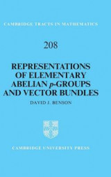 Omslag - Representations of Elementary Abelian p-Groups and Vector Bundles