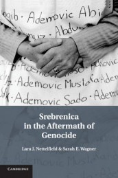 Srebrenica in the Aftermath of Genocide av Lara J. Nettelfield og Sarah E. Wagner (Heftet)