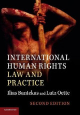 Omslag - International Human Rights Law and Practice
