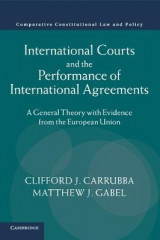Omslag - International Courts and the Performance of International Agreements