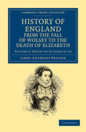History of England from the Fall of Wolsey to the Death of Elizabeth av James Anthony Froude (Heftet)