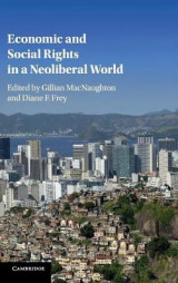Omslag - Economic and Social Rights in a Neoliberal World