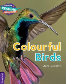 Colourful Birds Purple Band av Claire Llewellyn (Heftet)