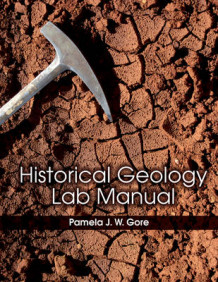Historical Geology Lab Manual av Pamela J. W. Gore (Heftet)