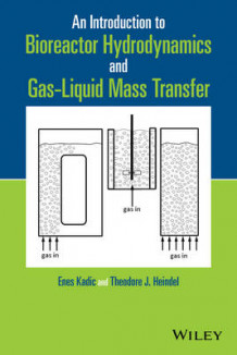 An Introduction to Bioreactor Hydrodynamics and Gas-Liquid Mass Transfer av Enes Kadic og Theodore J. Heindel (Innbundet)