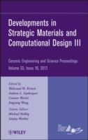 Developments in Strategic Materials and Computational Design III av ACerS (American Ceramic Society) (Innbundet)