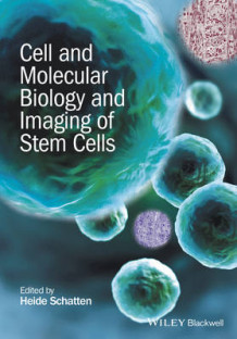 Cell and Molecular Biology and Imaging of Stem Cells (Innbundet)