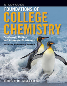 Student Study Guide to Accompany Foundations of College Chemistry, 14th & Alt 14th Edition av Morris Hein og Susan Arena (Heftet)